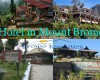 Hotel in mount Bromo