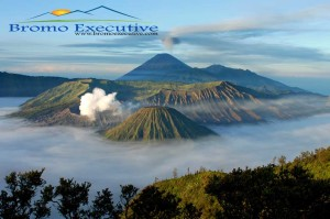 bromo tour package