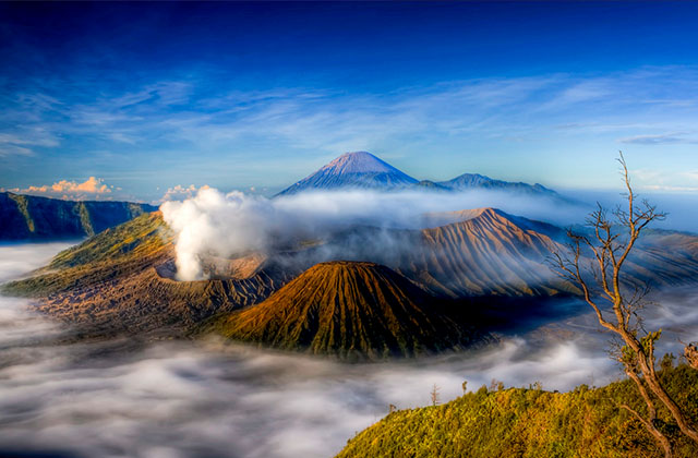 Bromo Midnight Tour Packages